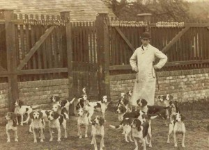 Caynsham Foot Beagle Pack 1885