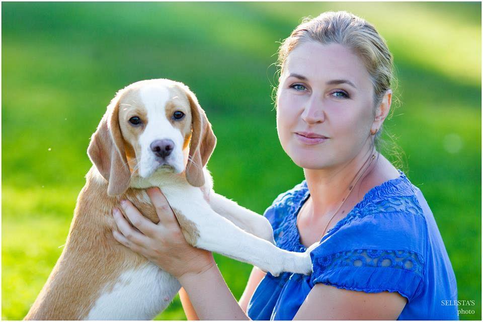 beagle als freund