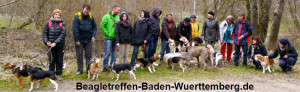Beagle Treffen Baden Württemberg