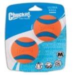 idealer Ball zum Apportieren: Beagle beschäftigen