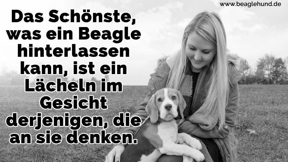 Eine Frau und ihr Beagle auf Rasen