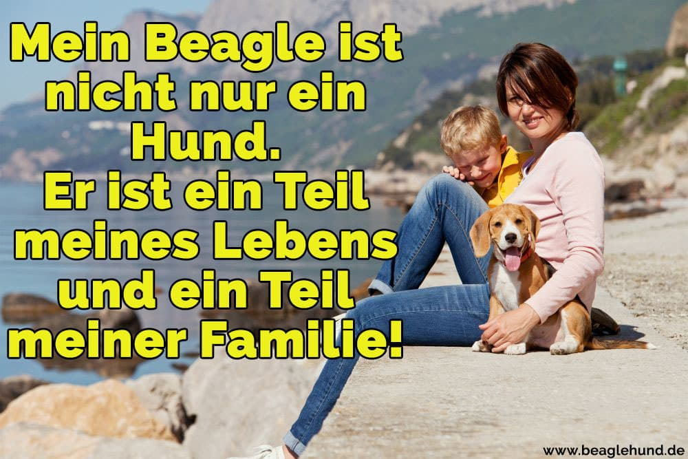 Eine Familie mit Ihrem Beagle am Strand