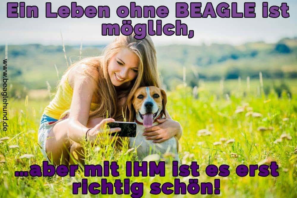 Eine Frau nimmt einen selfie mit Ihrem Beagle