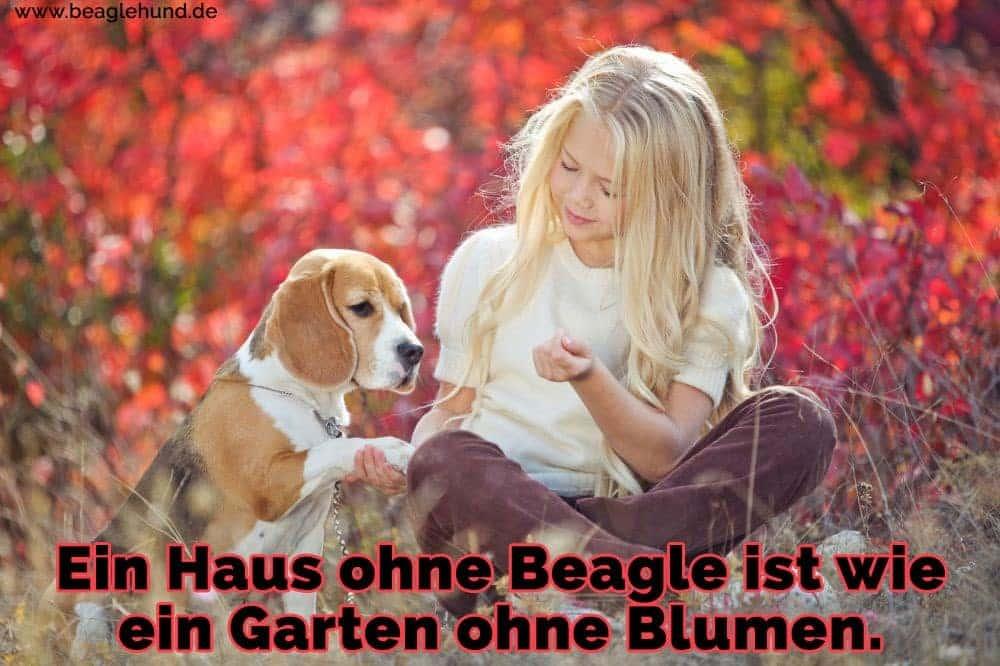 Ein Mädchen mit ihrem Beagle im Garten