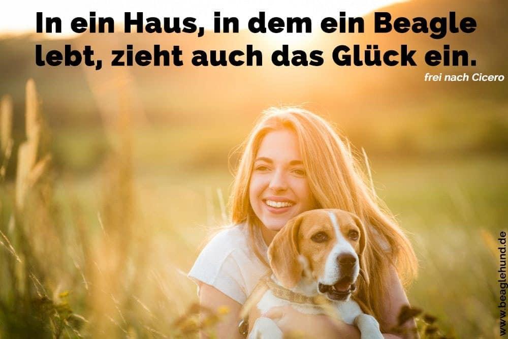 Eine junge Frau umarmt mit seinem Beagle in Feld