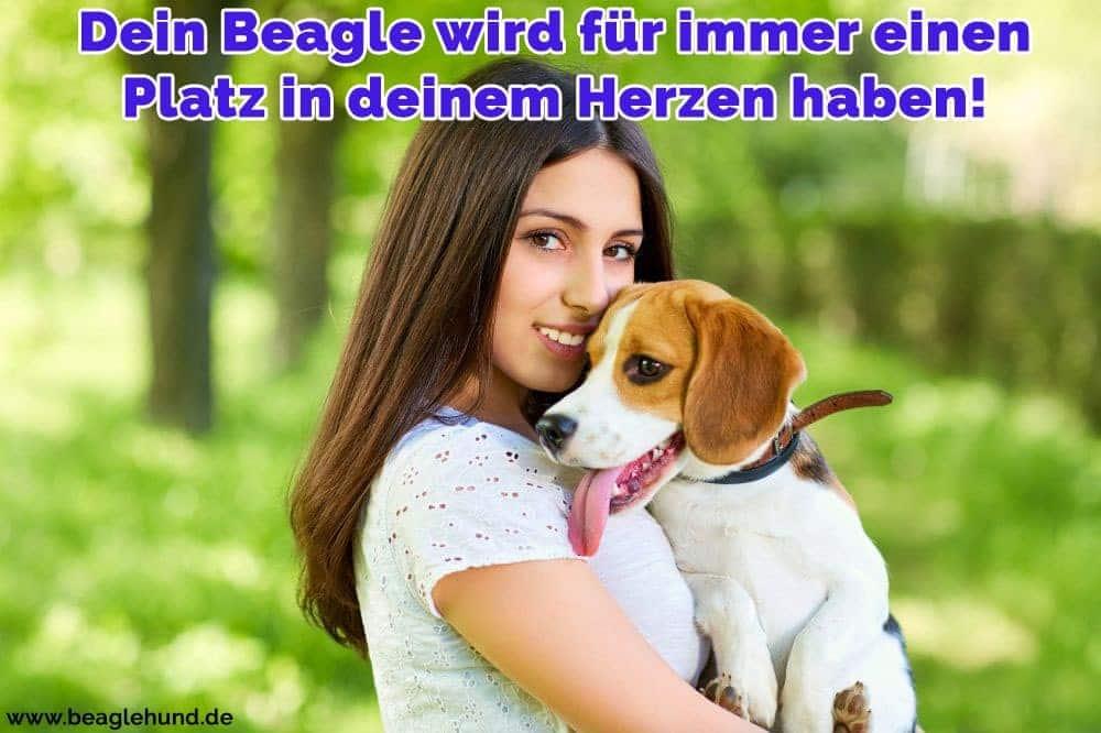 Eine Frau hält sie im Park Beagle