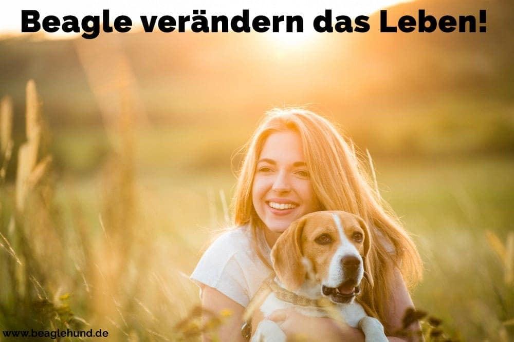 Eine Frau umarmt ihren Beagle in Feld